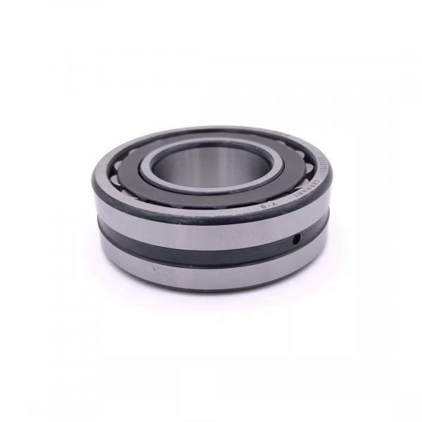 Low Price and High Quality Cylindrical Roller Bearings319