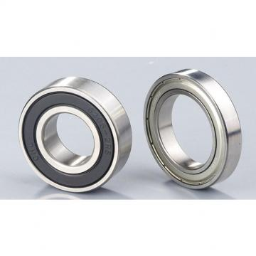Toyana CX575 Wheel Bearings