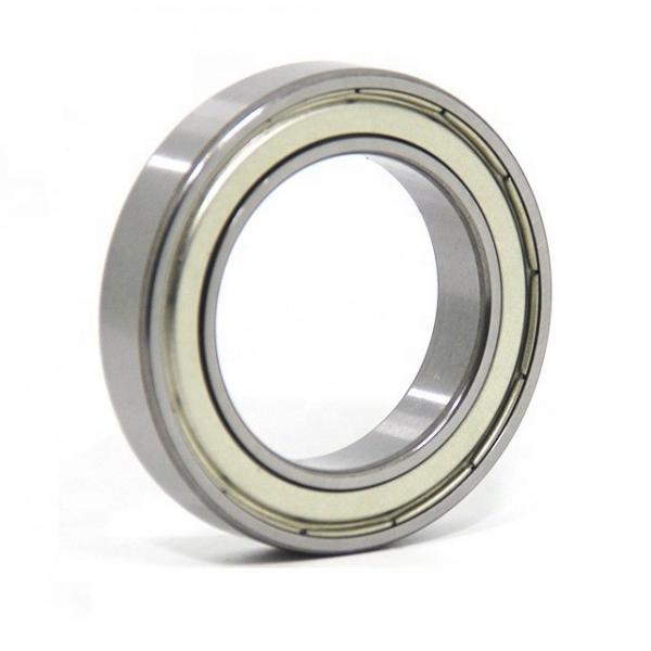 NSK Nu2309 Cylindrical Roller Bearing 45X100X36mm 1.3kgs #1 image